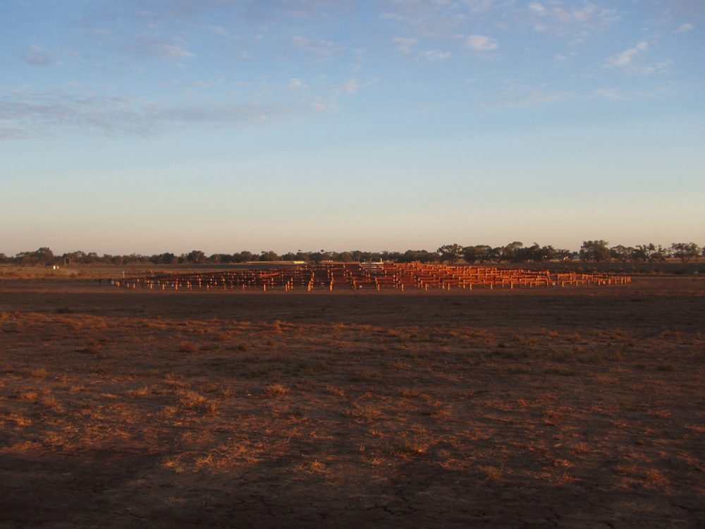 Round Up Maze, Hay, New South Wales, 2005 – twilight at site of commission