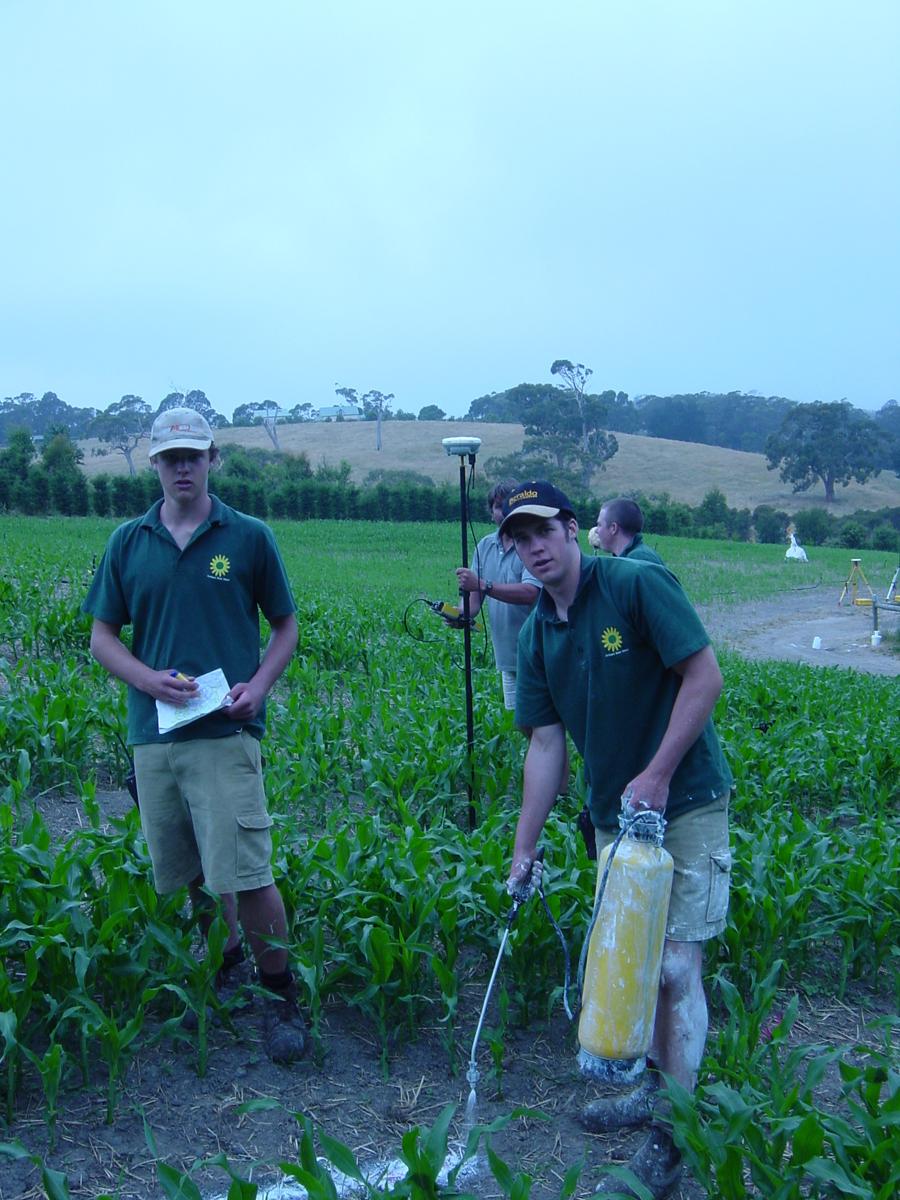 55 Ring Maze, Mornington Peninsula, Victoria, 2000 – planting of vegetation